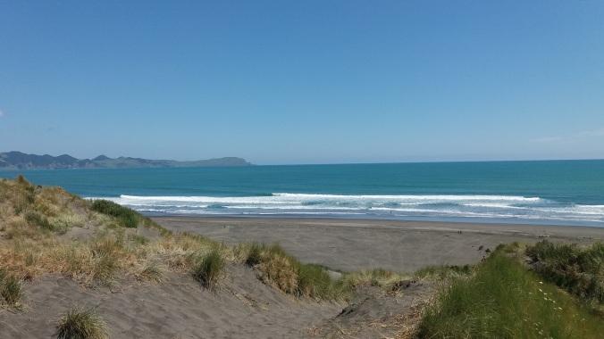 Kawhia coast